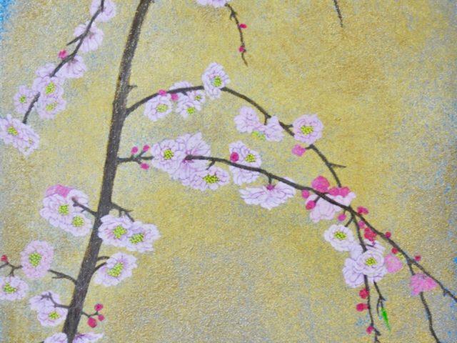 A plum blossom II