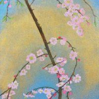 A plum blossom I
